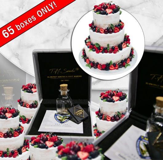 L4YER Cake - Regular Limited Edition Seeds