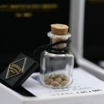 La S.A.G.E.™ X BC X SBCC - Regular Limited Edition Seeds