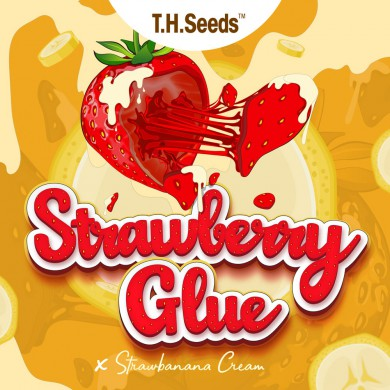 Strawberry Glue X SBC  - Regular Limited Edition Seeds