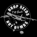Ladies Drop Seeds Not Bombs T-shirt