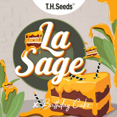 La S.A.G.E.™ X BC X SBC - Regular Limited Edition Seeds