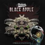 Black Apple Hitchcock