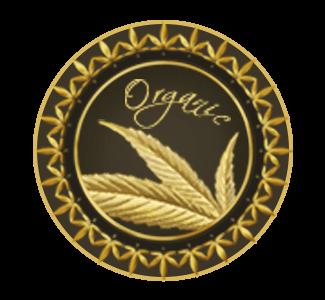 T.H. Seeds Graines Biologiques